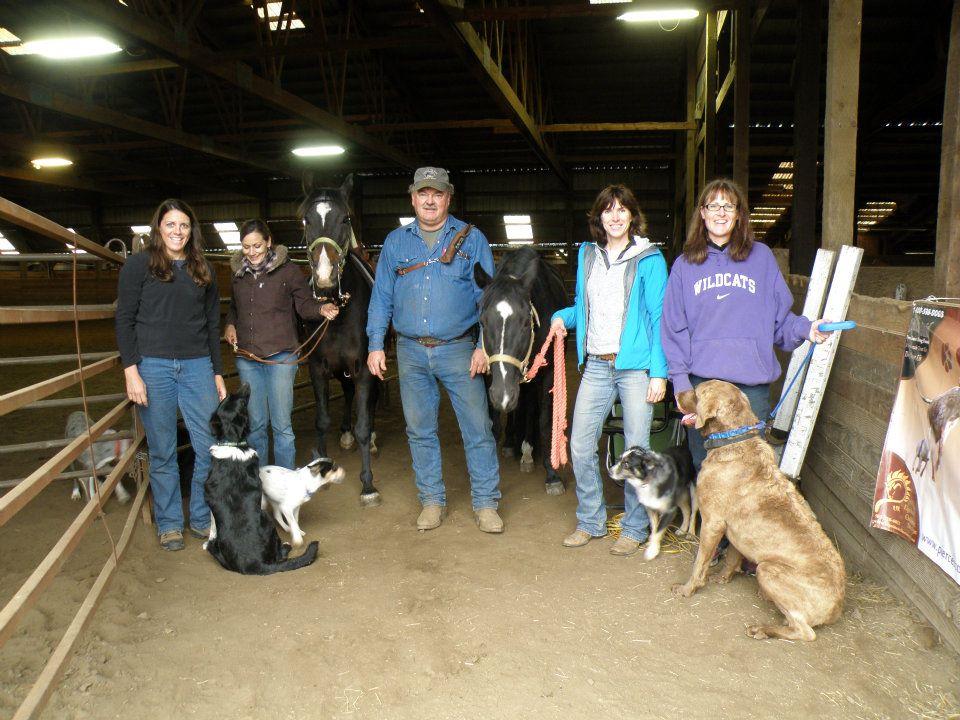 Establishment Registration Dog Food