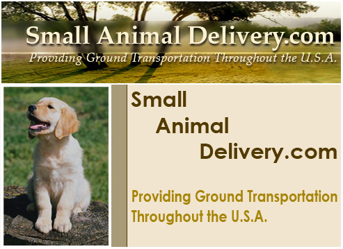 Small Animal Delivery Services