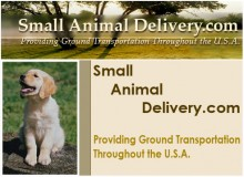 Small Animal Delivery